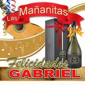Felicidades Gabriel