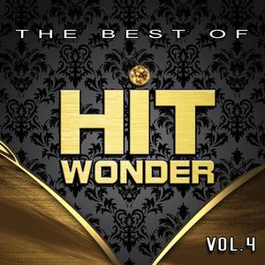 Hit Wonder: The Best Of, Vol. 4