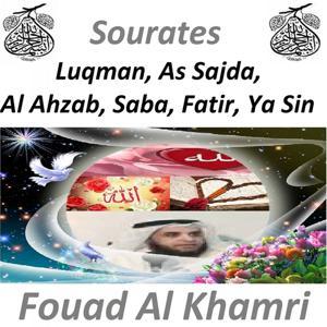 Sourates Luqman, As Sajda, Al Ahzab, Saba, Fatir, Ya Sin (Quran - Coran - Islam)