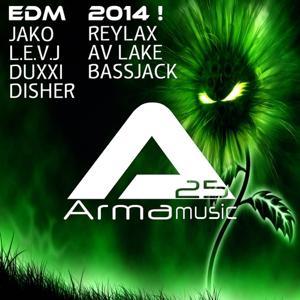 ARMA25 PRESENTS: EDM 2014!
