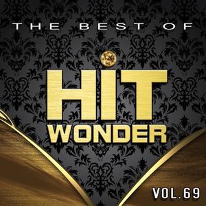 Hit Wonder: The Best Of, Vol. 69