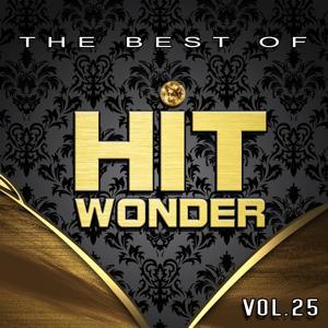 Hit Wonder: The Best Of, Vol. 25