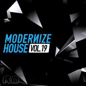 Modernize House, Vol. 19