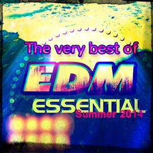 The Very Best of EDM Essential Summer 2014