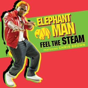 Feel The Steam (feat. Chris Brown) (International)