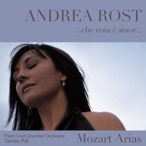 Che cosa è amor : Mozart Arias