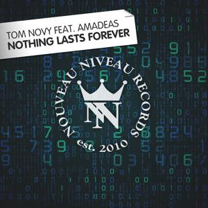 Nothing Lasts Forever (feat. Amadeas)