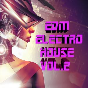 EDM Electro House, Vol. 2
