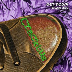 Get Down (Spinzer 2014)