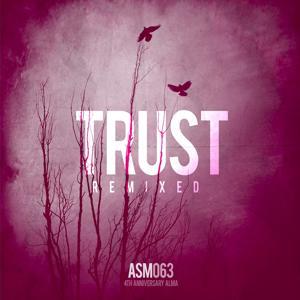 Trust Remixed