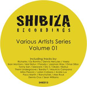 Various Artists Series 01