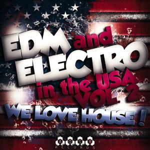 EDM and Electro in USA, Vol. 2