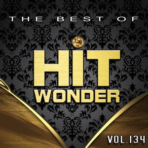 Hit Wonder: The Best of, Vol. 134