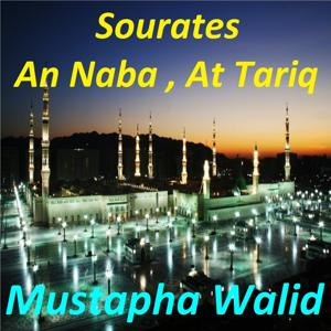 Sourates An Naba, At Tariq (Quran)