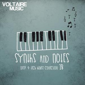 Synths and Notes 18 (Deep & Tech House Collection)