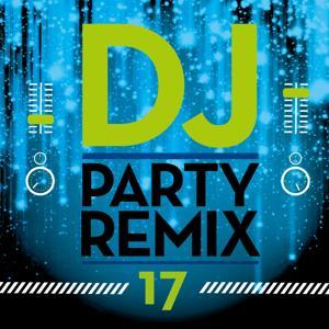 DJ Party Remix, Vol. 17