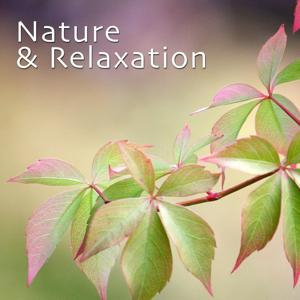 Nature & Relaxation