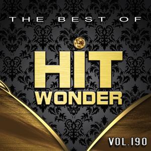 Hit Wonder: The Best of, Vol. 190