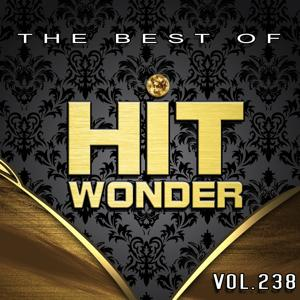Hit Wonder: The Best of, Vol. 238