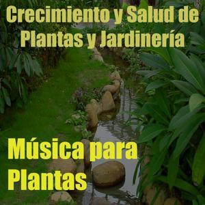 Música para Plantas, Vol. 9 (Crecimiento y Salud de Plantas y Jardinería)