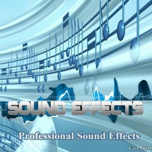 Professional Sound Effects, Vol. 89