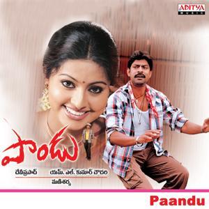 Paandu (Original Motion Picture Soundtrack)