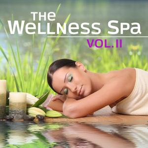 The Wellness Spa, Vol. 2 (Soft Instrumental Piano Music for Meditation, Relaxation, Massage, Stress Relief, Sound Therapy, Healthy Sleep and Sauna)
