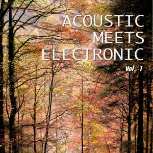 Acoustic Meets Electronic, Vol. 1 (Best Mix of Acoustic & Electronic Chill out and Chill House Tracks)