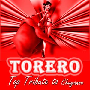 Torero: Top Tribute to Chayanne