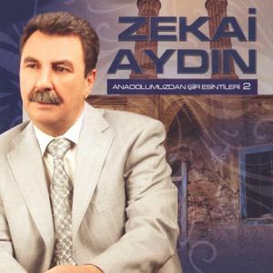 Anadolumuzdan Şiir Esintileri, Vol. 2