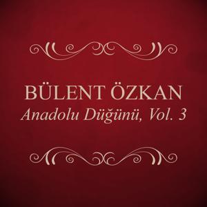 Anadolu Düğünü, Vol. 3