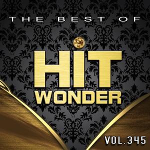 Hit Wonder: The Best Of, Vol. 345