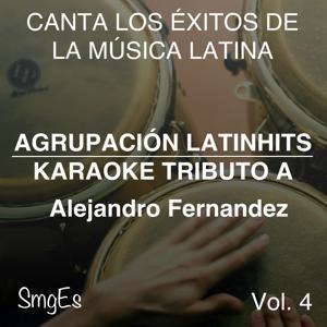 Instrumental Karaoke Series: Alejandro Fernandez, Vol. 4