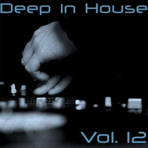 Deep in House, Vol. 12