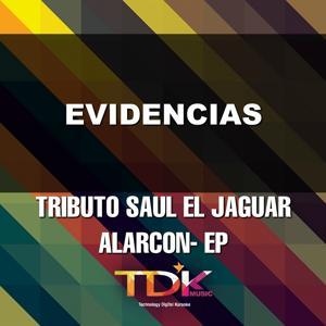 Evidencias (Karaoke Version) [In The Style Of Saul El Jaguar Alarcon]