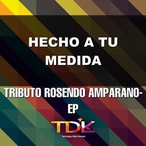 Hecho a Tu Medida (Karaoke Version) [In The Style Of Rosendo Amparano]