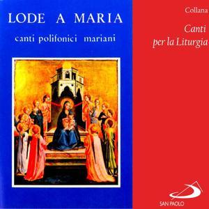 Collana canti per la liturgia: Lode a Maria (Canti polifonici mariani)