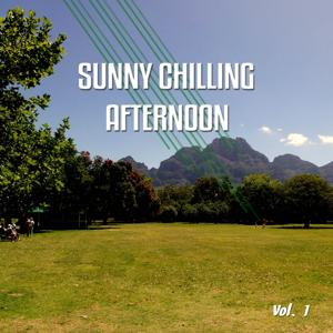 Sunny Chilling Afternoon, Vol. 1 (Best Sunny Chill out, Lounge and Smooth House Tunes)