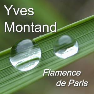 Flamence De Paris