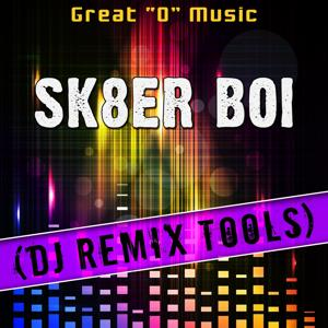 Sk8er Boi (DJ Remix Tools)