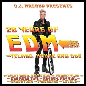 20 Years of EDM: Techno, House and Dub
