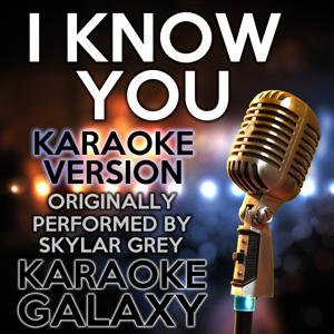 I Know You (Karaoke Version) (Originally Performed By Skylar Grey)