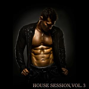 House Session, Vol. 3 (Small Size)