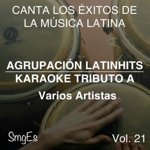 Instrumental Karaoke Series: Varios Artistas, Vol. 21