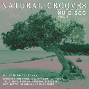 Natural Grooves Fines Selection of NU DISCO, Vol. 2