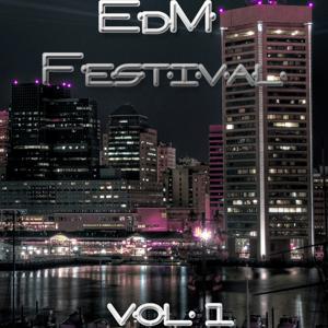 EDM Festival, Vol. 1