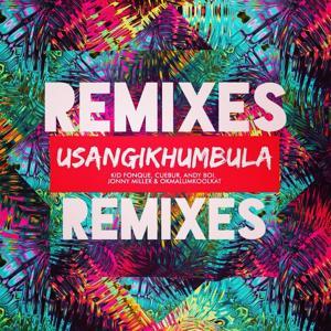 Usangikhumbula (Remixes)