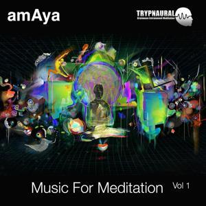 Music for Meditation Vol 1 Trypnaural