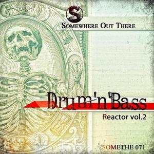Drum'n'Bass Reactor, Vol. 2