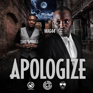 Apologize (feat. Sho Baraka)